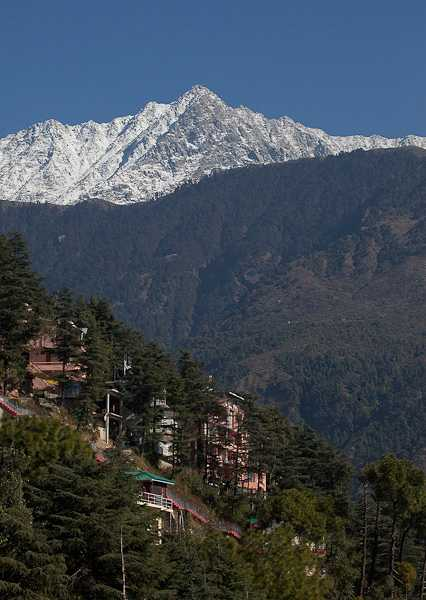 Dharamshala, Volunteer Travel in India