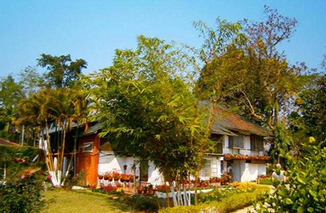Hollonghabi Tea Bungalow, Homestays in India