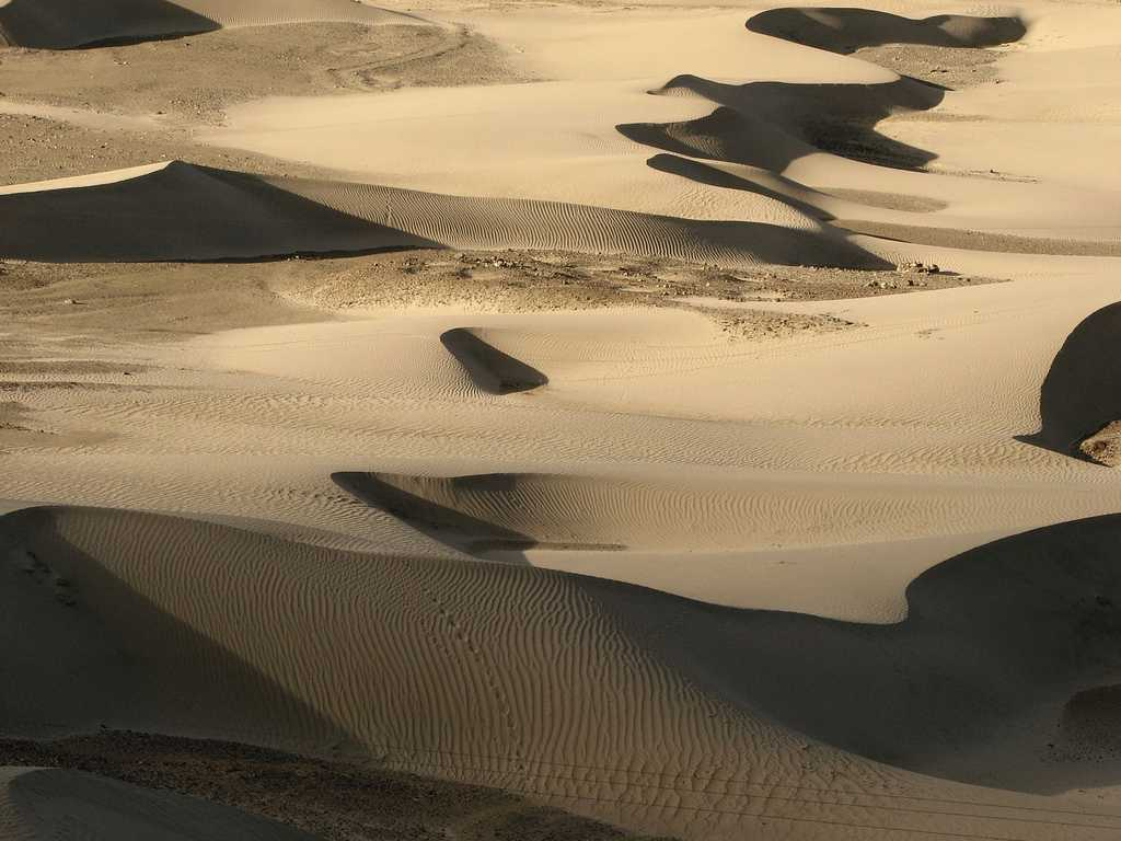 Dunes of the Nubra Valley, Places to visit in Leh Ladakh
