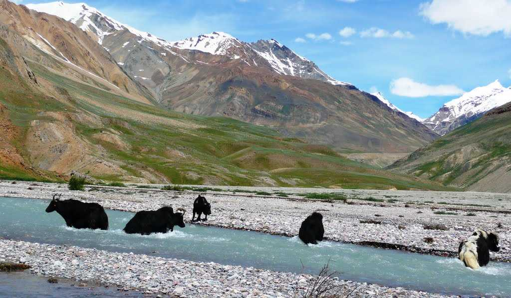 Spiti_Best Places to Visit in June, places to visit for summer vacation