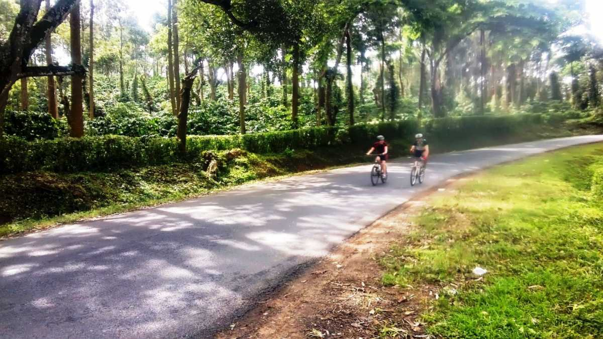 Cycling on the roads of Coorg