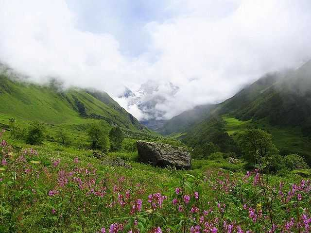 Valley of Flowers, Uttarakhand (Source)