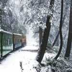 Places To Visit Near Delhi In Winters | Short Winter Trips From Delhi