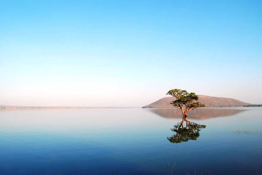 Lake Pakhal Forest, places to visit in Telangana