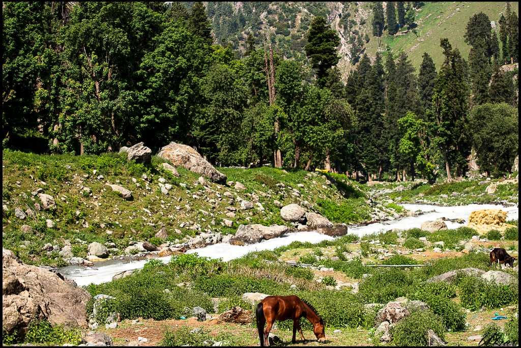 Amarnath Yatra route through Pahalgam