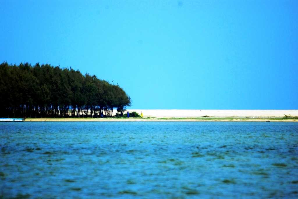 Pulicat Lake, Nellore (Credits: Source)