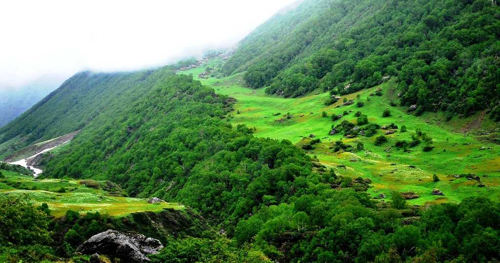 Nanda Devi and Valley of Flowers, World Heritage Sites in India