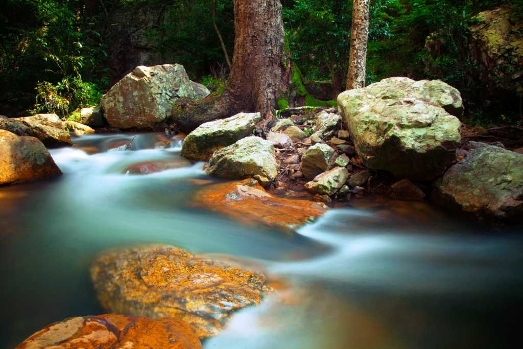 Water Streams, Talakona, Chittoor (Credits: Source)