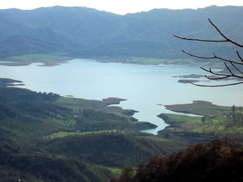 Bhakra Reservoir, Nangal Wetlands, places to visit near delhi in monsoon