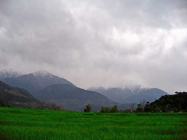 Palampur, short trip around Delhi