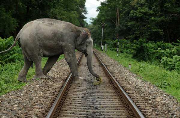 railway near Doors