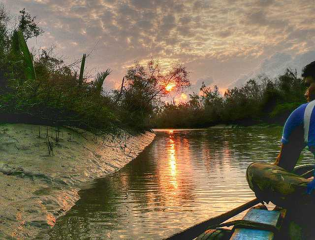 Sundarbans, places to visit in november in india