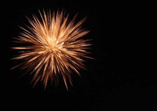 New Year's Celebration goa visit in december