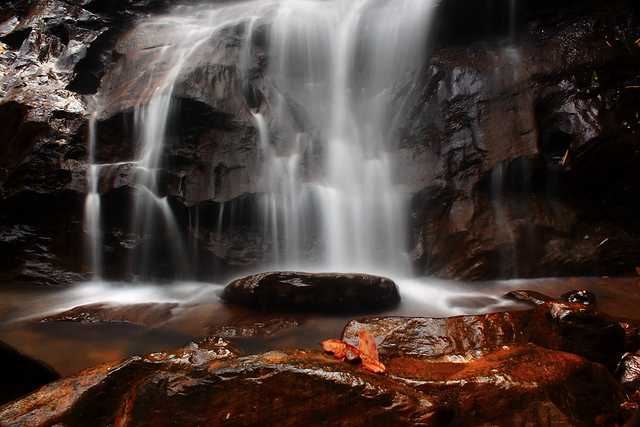 Agumbe, places to visit near Bangalore in winters