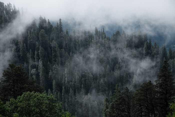 Tirthan Valley interesting offbeat trek