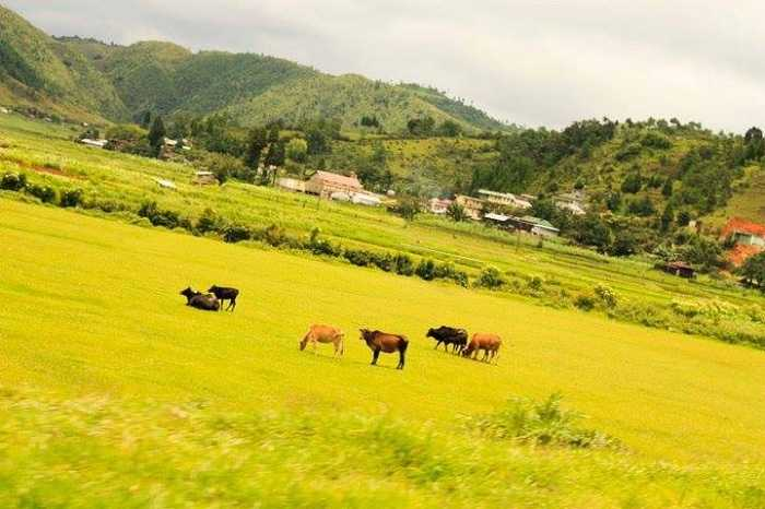 Mawsynram unexplored place in india