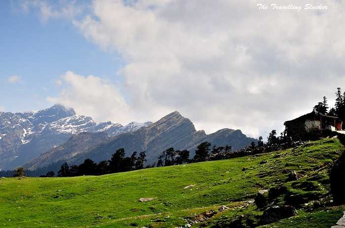 Chopta, Uttarakhand unexplored trek india