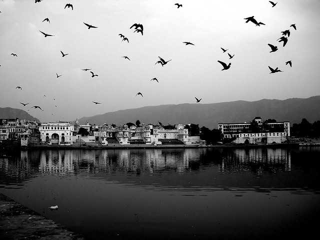 Pushkar, places to visit near delhi in winters