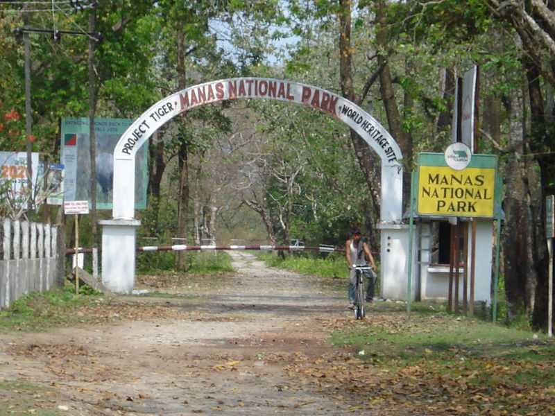 Manas National Park visit in October