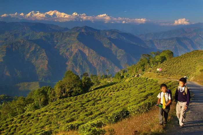 Darjeeling, Places To Go After Graduation With Your Friends