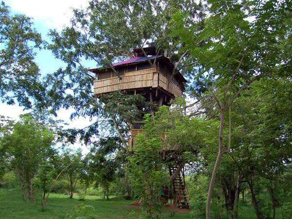 Machan, Tree houses in India
