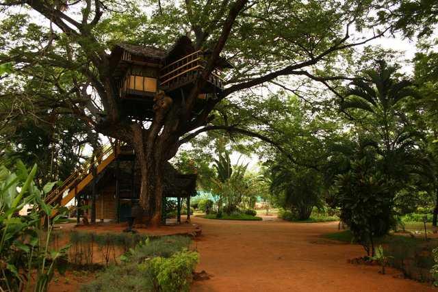 Chunnambar tree houses in india