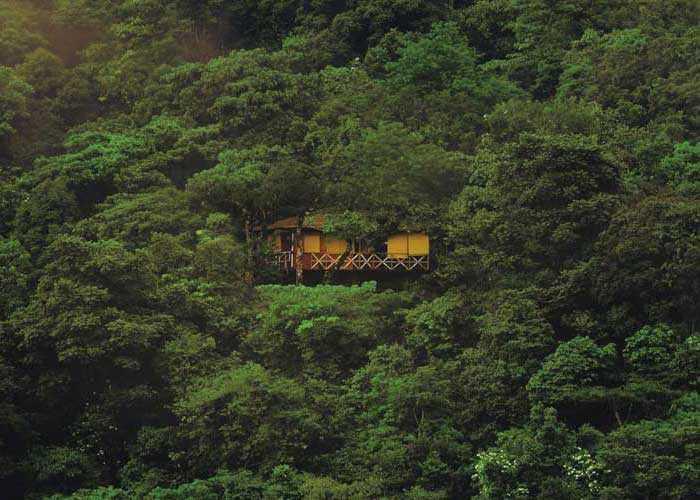 Vythiri Tree House Resorts in India