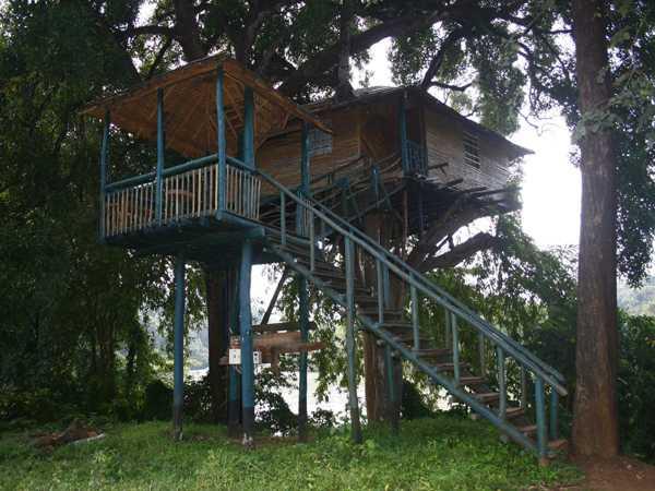 Hornbill Tree house Resorts in India