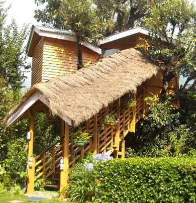 Manali tree houses in India