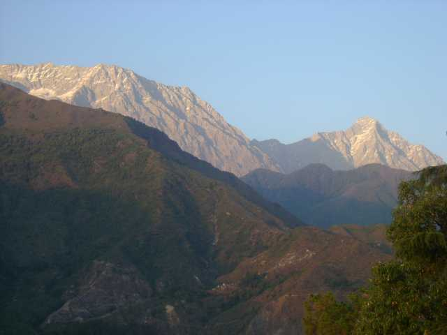 Sceneries from Dharamsala (Spurce)