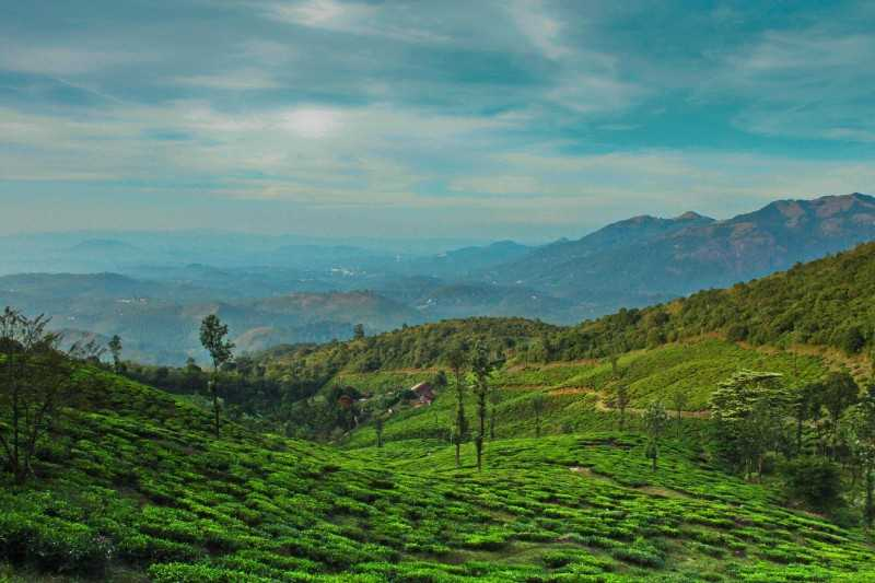 Wayanad, places to visit in april in india
