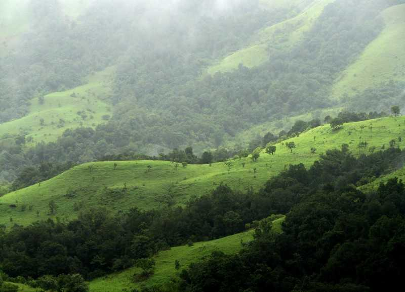 Best Places near Bangalore for Summers, kudremukh