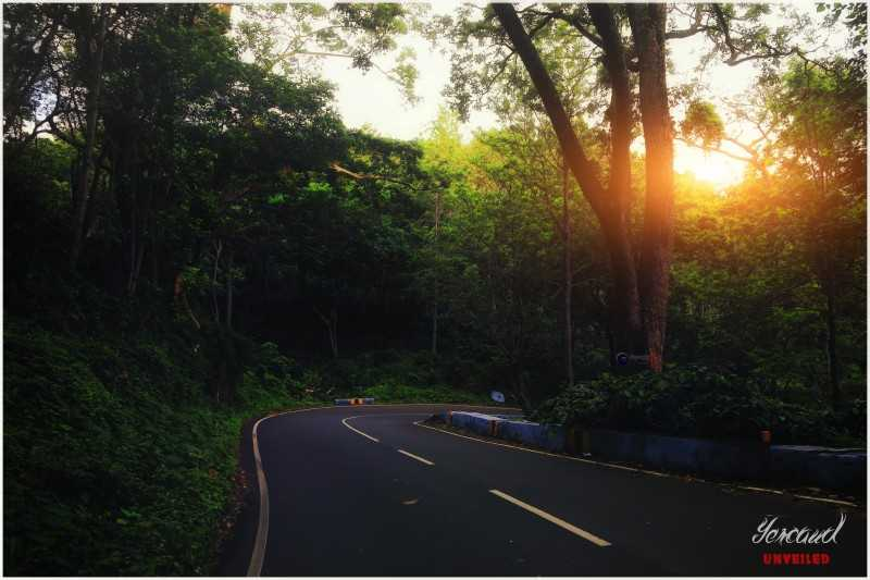 Best Places near Bangalore for Summers, yercaud