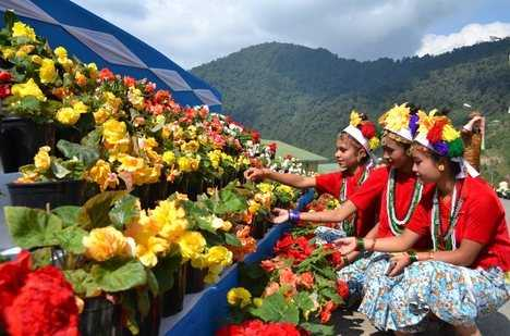 International flower Festival - Sikkim