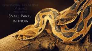 snake parks