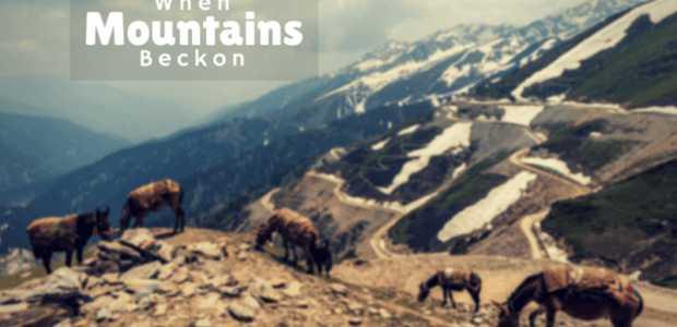 When the Mountains Beckon