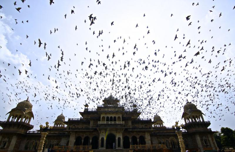 October 15 – The central library of Jaipur