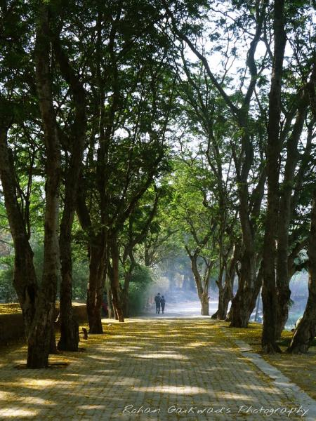 Sanjay Gandhi National Park, Haunted Places in India