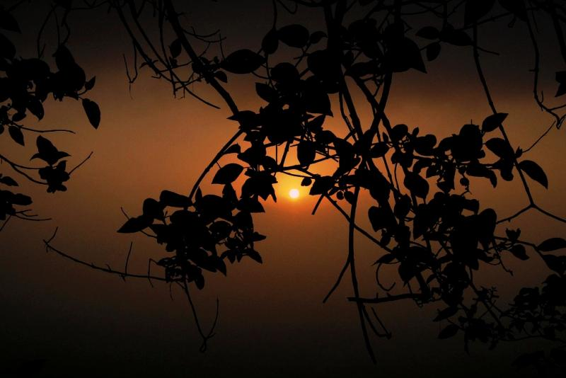 Setting sun at Agumbe (Source)