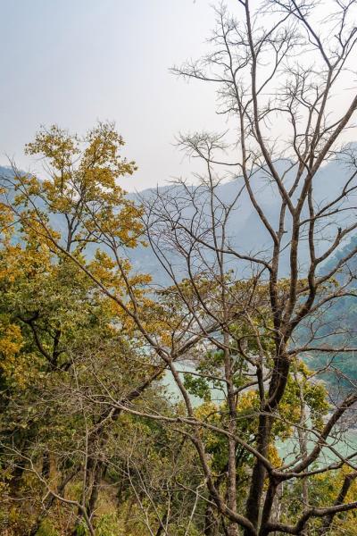 Hrishikesh Deoprayag entoure scenery