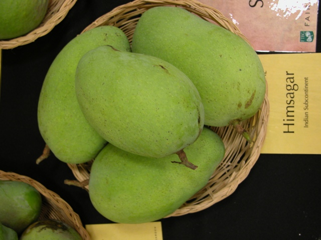 Himsagar mangoes, Mango in india