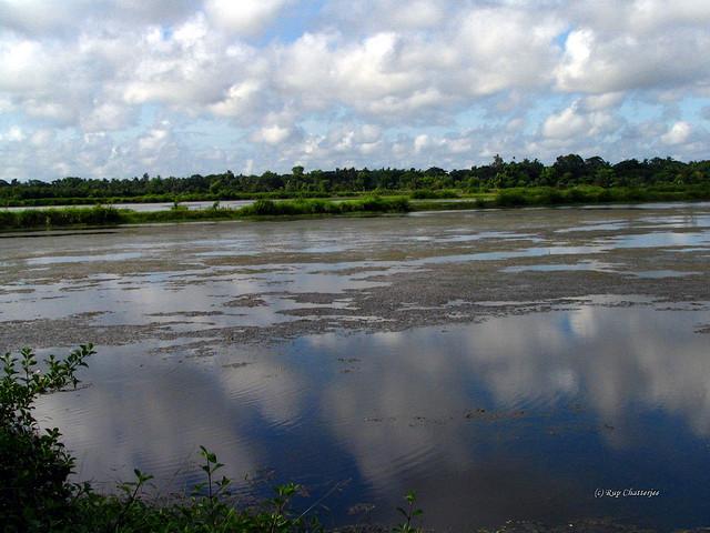 Taki - a rural getaway from Kolkata