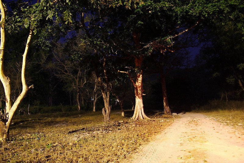delhi cantonment haunted by ghost lady