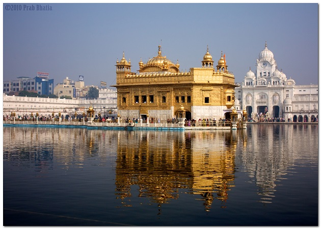 The Golden Temple Resplendent in the Sunlight