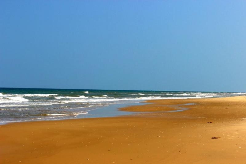 Virgin Pichavaram Beach