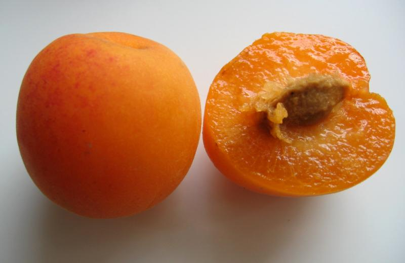 The seed of a ripe apricot used to make Tapu.