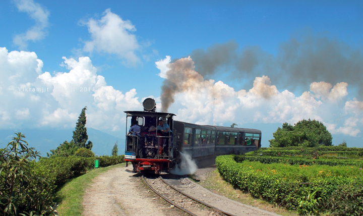 The DHR toy train in all its beauty - Mountain Railways of India