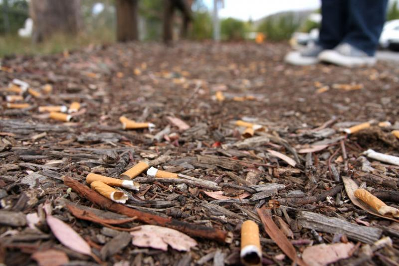 cigarette butts, ecotourism in India