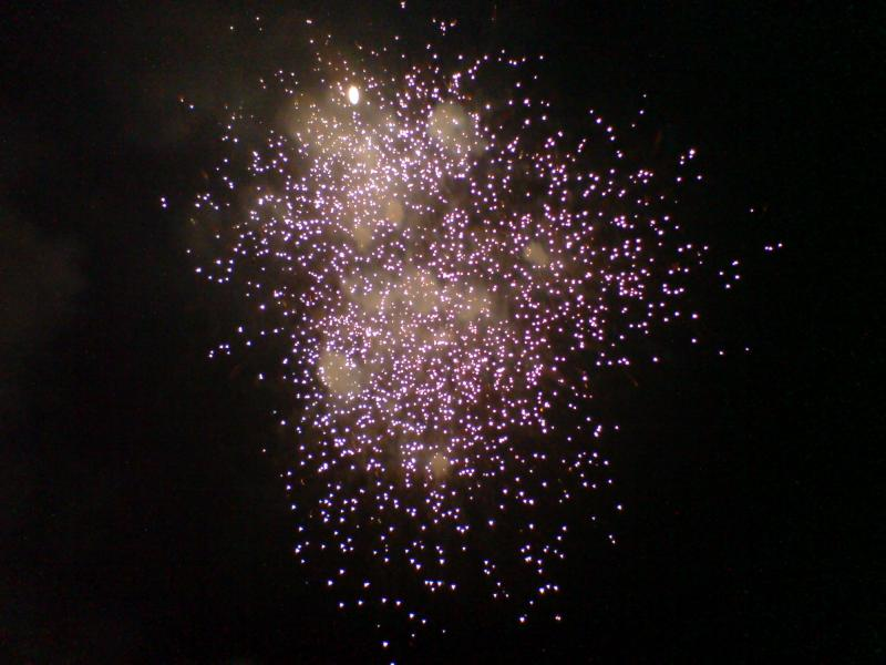 Vishu_ Festivals of Kerala