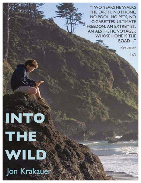 essay about the book into the wild